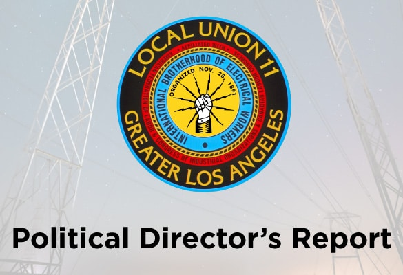 Political Director's Report – May 2020
